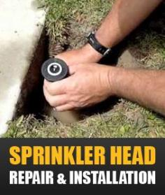 our Vallejo techs provide professional sprinkler head repair and installation service